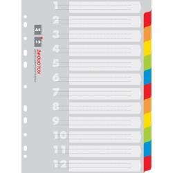 PRZEKŁADKI KOLOROWE KARTONOWE A4 INDEX 12 kolorów